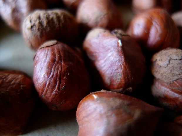 Hazelnuts for dates